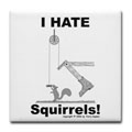 Squirrels - Give 'em the boot!